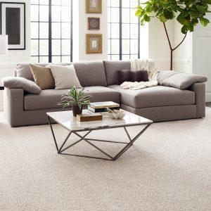 Living room interior | Carpet Mart, INC